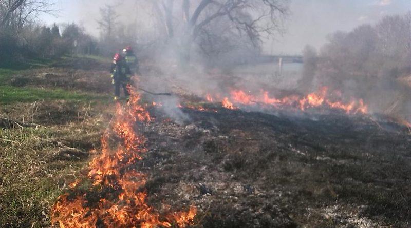 STOP wypalaniu traw na wiosnę! Apel ARiMR